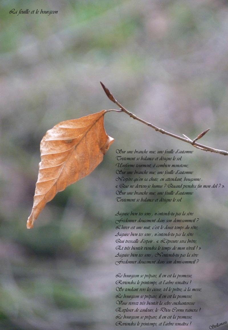La feuille et le bourgeon / / Sur une branche nue, une feuille d'automne / Tristement se balance et désigne le sol. / Uniforme tourment, ô combien monotone, / Sur une branche nue, une feuille d'automne / N'espère qu'en sa chute, en attendant, bougonne : / « Que ne deviens-je humus ? Quand prendra fin mon dol ? ». / Sur une branche nue, une feuille d'automne / Tristement se balance et désigne le sol. / / Aiguise bien tes sens ; n'entends-tu pas la sève / Fredonner doucement dans son demi-sommeil ? / L'hiver est une nuit, c'est le doux temps du rêve, / Aiguise bien tes sens ; n'entends-tu pas la sève / Qui tressaille d'espoir : « L'épreuve sera brève, / Et très bientôt viendra le temps de mon réveil ! » / Aiguise bien tes sens ; N'entends-tu pas la sève / Fredonner doucement dans son demi-sommeil ? / / Le bourgeon se prépare, il en est la promesse, / Reviendra le printemps, et l'arbre renaîtra ! / Se tendant vers les cieux, tel le prêtre, à la messe, / Le bourgeon se prépare, il en est la promesse, / Vous verrez très bientôt la selve enchanteresse / Exploser de couleurs, le Dieu Cornu vaincra ! / Le bourgeon se prépare, il en est la promesse, / Reviendra le printemps, et l'arbre renaîtra ! / / Stellamaris