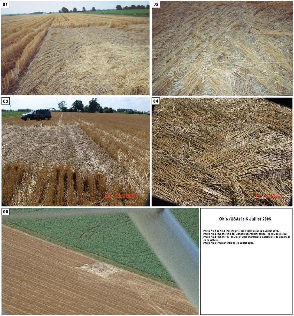 Crop circle de East Field, Nr Alton Barnes, Wiltshire. Le 14.07.09 Crop-circle-ohio-...et-2005--2256263