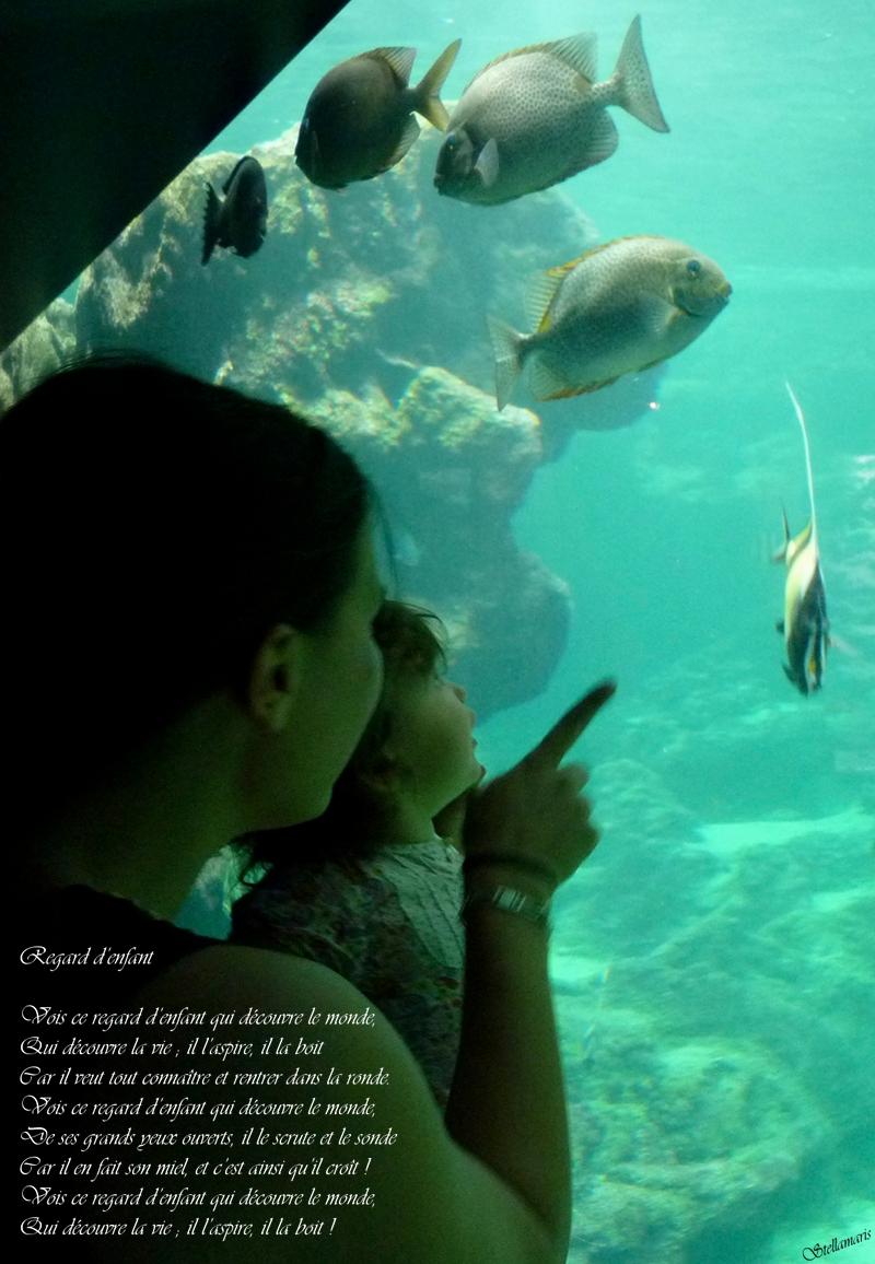 Regard d'enfant / / Vois ce regard d'enfant qui découvre le monde, / Qui découvre la vie ; il l'aspire, il la boit / Car il veut tout connaître et rentrer dans la ronde. / Vois ce regard d'enfant qui découvre le monde, / De ses grands yeux ouverts, il le scrute et le sonde / Car il en fait son miel, et c'est ainsi qu'il croît ! / Vois ce regard d'enfant qui découvre le monde, / Qui découvre la vie ; il l'aspire, il la boit ! / / Stellamaris