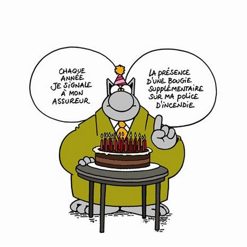 Le Chat Ii Chez Dom